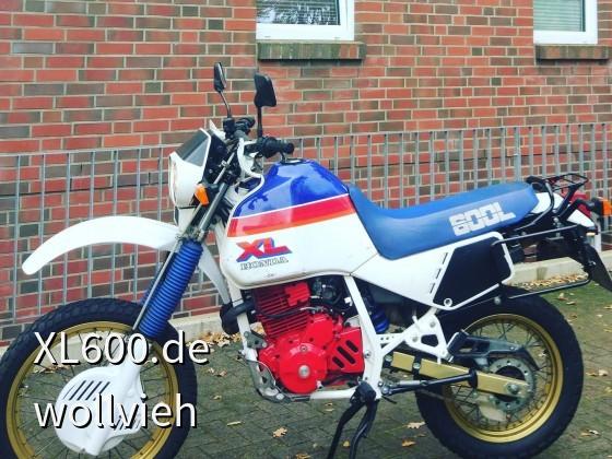 XL600LMf - mein erstes Motorrad